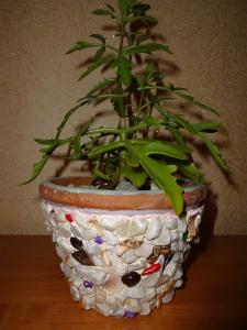 gorshok 3