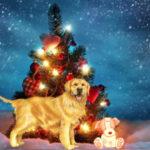 Вышиваем символ года собаку